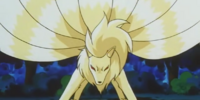 Mansion owner's Ninetales