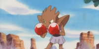 Anthony's Hitmonchan