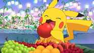 Pikachu about to eat an apple