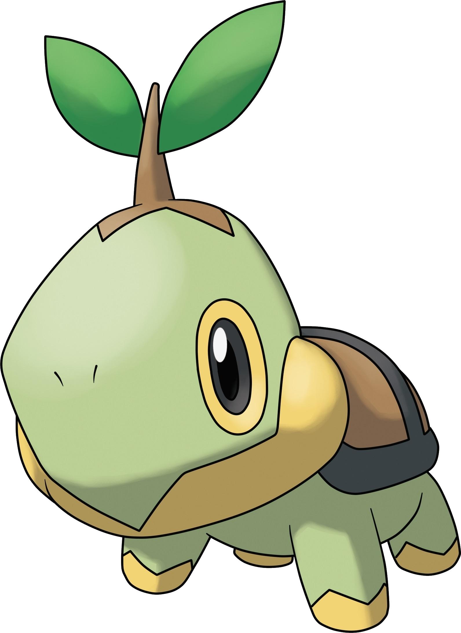 Pokemon And Y Cartoon Characters : Image turtwig pokemon ranger shadows of almia