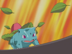 Jimmy Ivysaur Razor Leaf