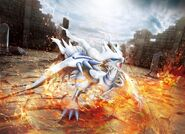 Reshiram BW1 artwork