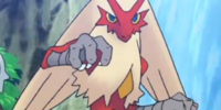 May's Blaziken (trailer)