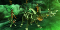 Mable's Houndoom (anime)