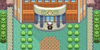 Hoenn Pokémon League