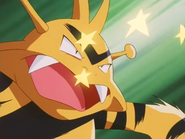 Head of Security Electabuzz Swift