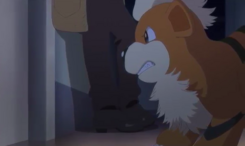 Looker's Growlithe Generations
