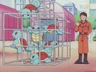 Team Squirtle