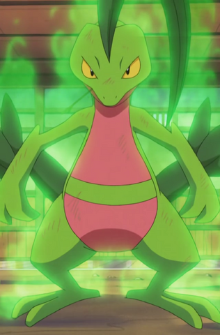 File:Ash Grovyle Overgrow.png