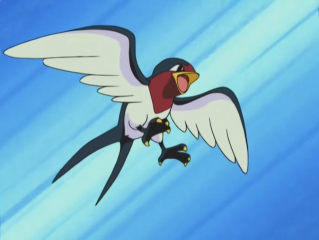 File:Ash Taillow.png
