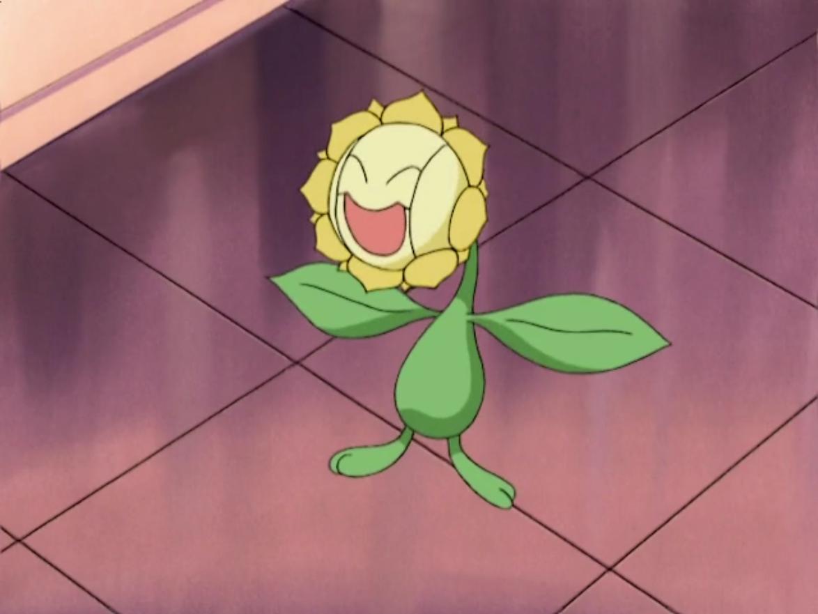 Nando Sunflora