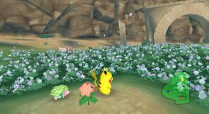 Park Flower Zone