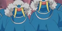 Team Aqua's Walrein
