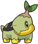 387Turtwig DP anime 9