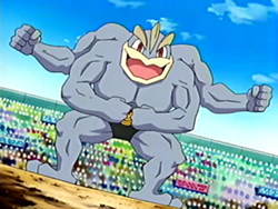 250xBruno Machamp