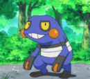 Croagunk Brocka