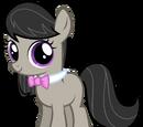 Y Octavia