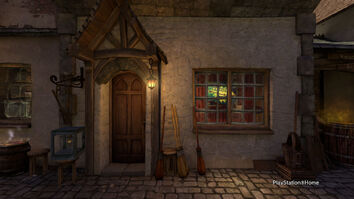 Quality Quidditch Supplies 1