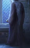 Dumbledore B4C35M1 background