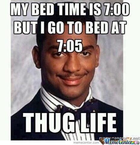 File:Thug Life.jpg