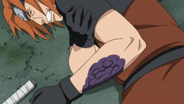File:Rinkaichū destroying Fū's cells.png