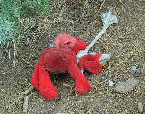 File:Elmo Died.jpeg