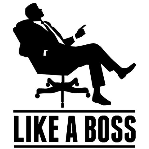 File:Like A Boss.jpg
