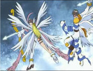 Angemon&Angewomon Technik