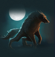 Werewolves Pottermore