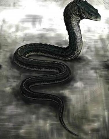 File:Basilisk snake.jpg