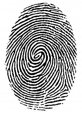 File:Fingerprint.jpg