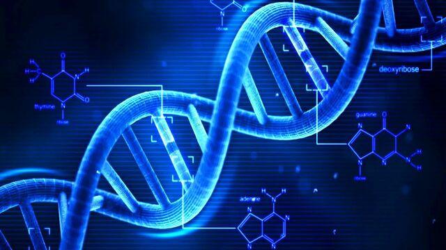 File:DNA-0.jpg