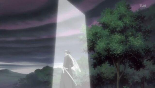 File:Byakuya using Danku.jpg