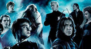 Wizards Witches Harry Potter