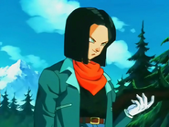 Android17POEU