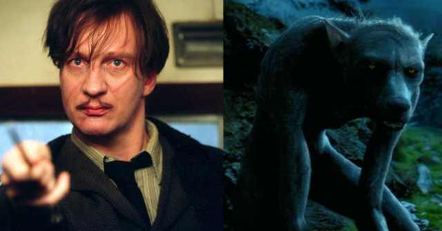 File:Remuslupin.png
