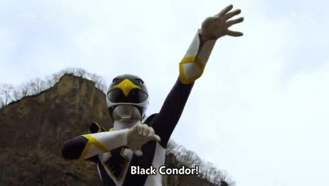 File:Black Condor (Delusional War).jpg