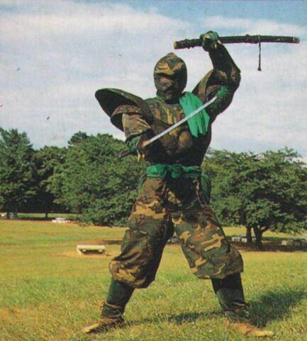 File:MMPR Dark Warrior.jpg
