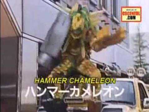 File:Hammer chameleon.jpg