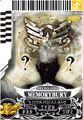 MemoryBury card