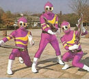 Soldiers Kunekune