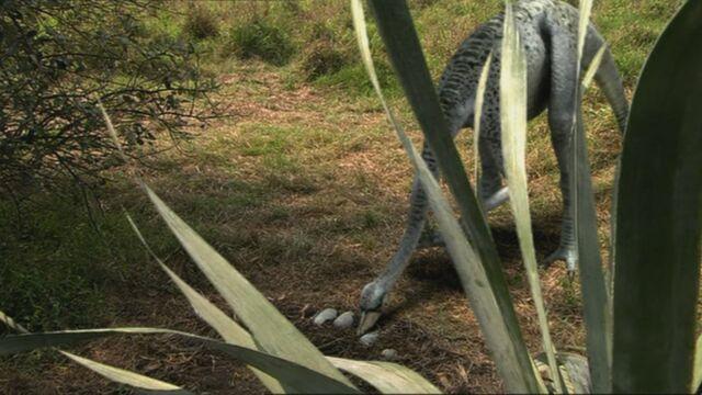 File:1x3 OrnithomimusCheckingOnEggs.jpg