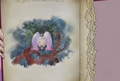 Nico's picture book's last page