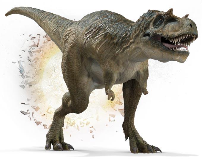 Primeval New World Albertosaurus Albertosaurus | Anomal...