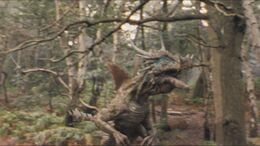 3x7 Dracorex 3