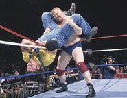 Royal Rumble 1996.3