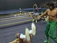 Great American Bash 1989.00041