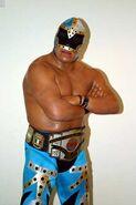 Mr. Niebla CMLL World Heavyweight