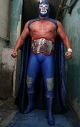 Blue Demon Jr. 8
