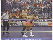 Great American Bash 1990.00041